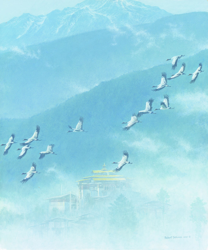 Bateman, Cranes-of-Bhutan