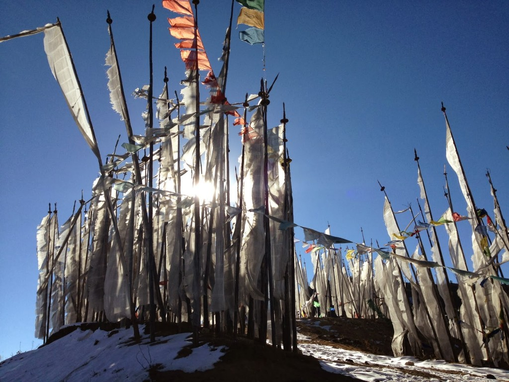 Root, Brick - Chele La Prayer Flags